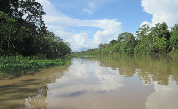 Peru Adventures – Amazon Rainforest