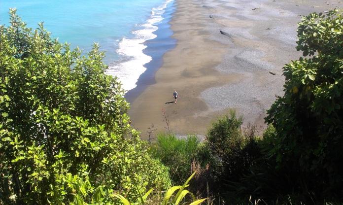 Rarangi Beach (11) 2013