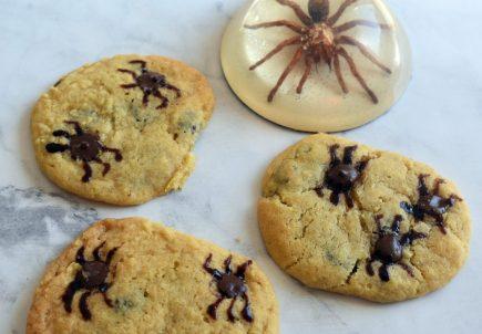 spider cookies 02