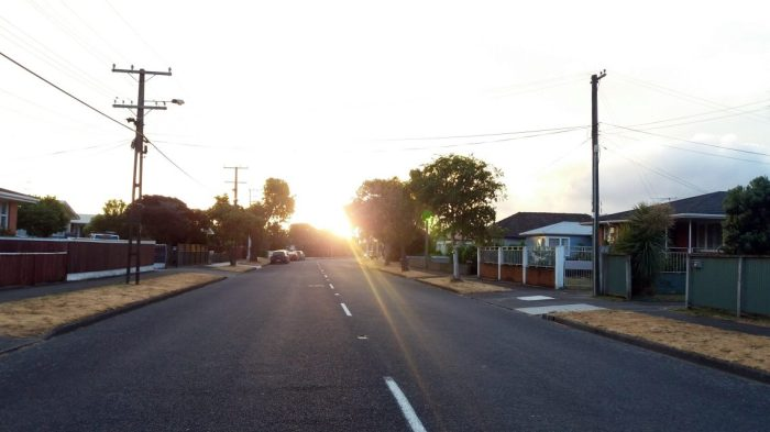 evening walk 2