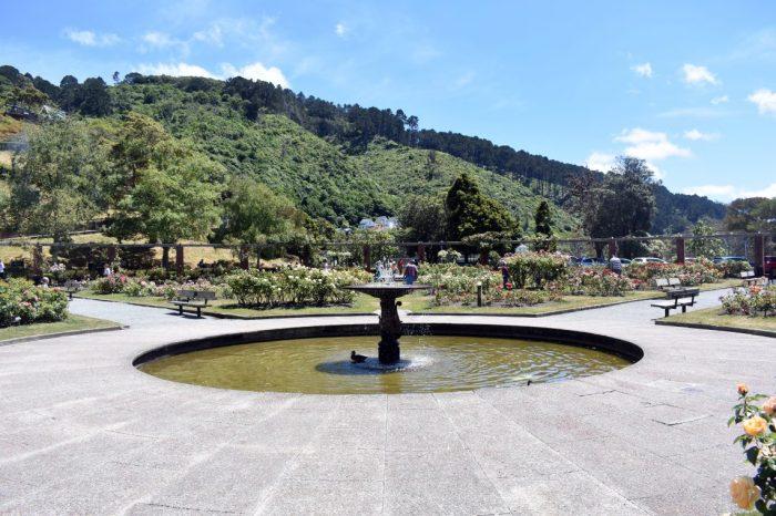 gardens 07