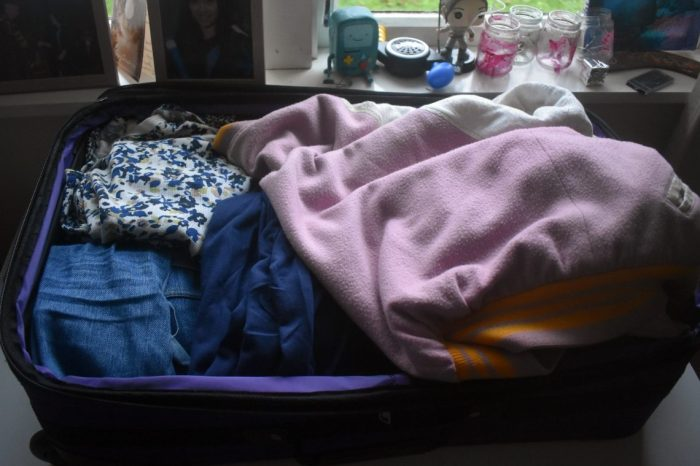 travel bag 05