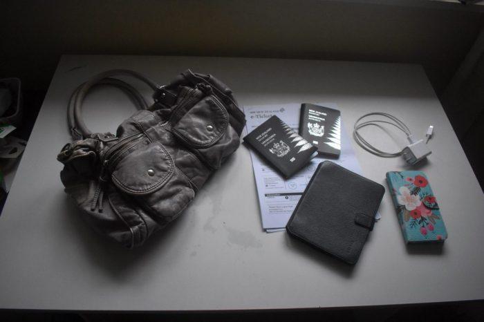 travel bag 06