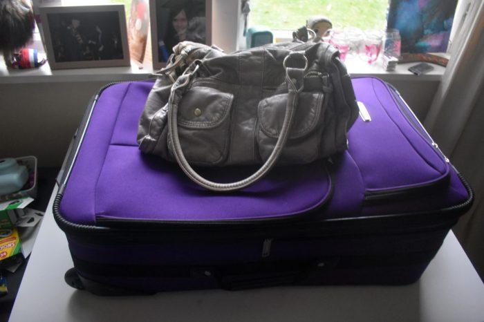 travel bag 07