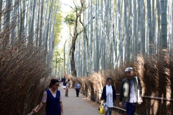arashiyama bamboo grove 02