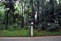meiji shrine 02
