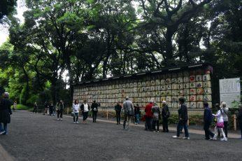 meiji shrine 03