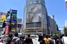 shibuya crossing 01