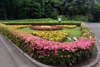 shinjuku garden 02