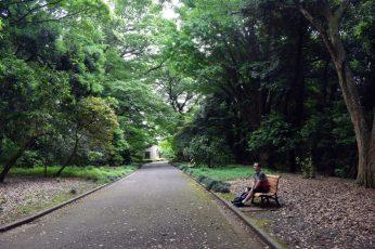 shinjuku garden 03