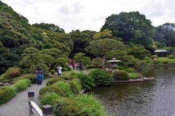 shinjuku garden 05