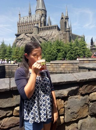 wizarding world 12